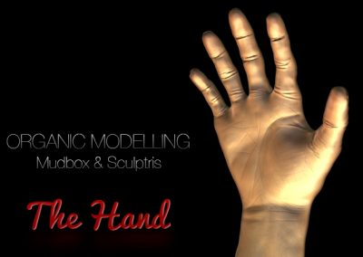 The Hand – Organic Modelling