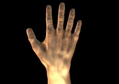 The_Hand_Back