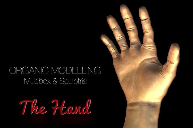 The Hand – Organic Modelling