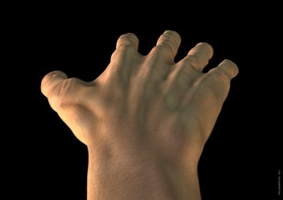 hand-modelling-back-troy-baverstock