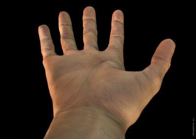 hand-modelling-palm-troy-baverstock